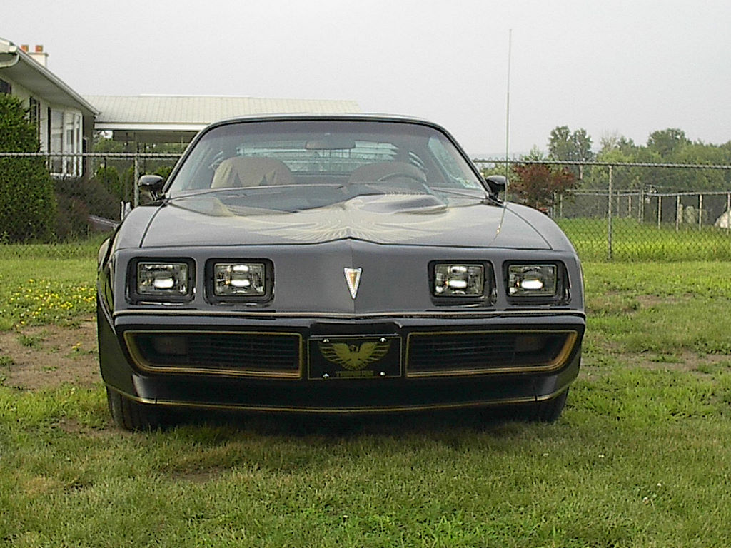 1981 Special Edition Turbo Trans Am Lot 1